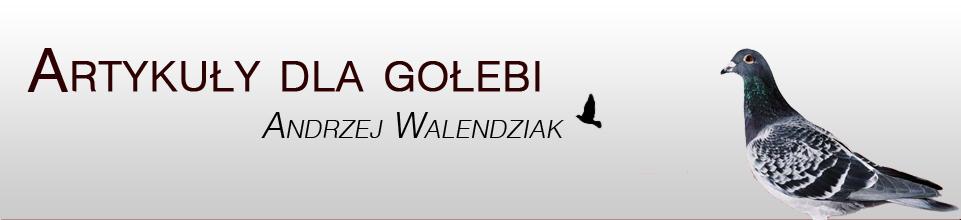 http://www.andrzejwalendziak.pl/templates/img/logo.jpg